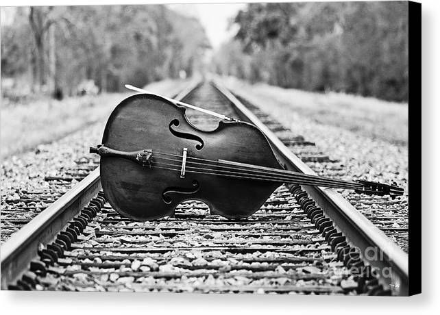 Bass Canvas Print featuring the photograph Laying Down Some Tracks by Scott Pellegrin
