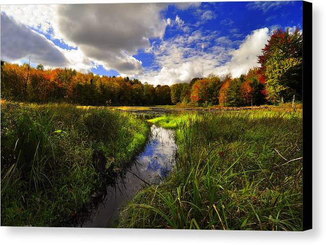 Finger Lakes Canvas Print featuring the photograph Northern Reflections by Stuart Gallagher