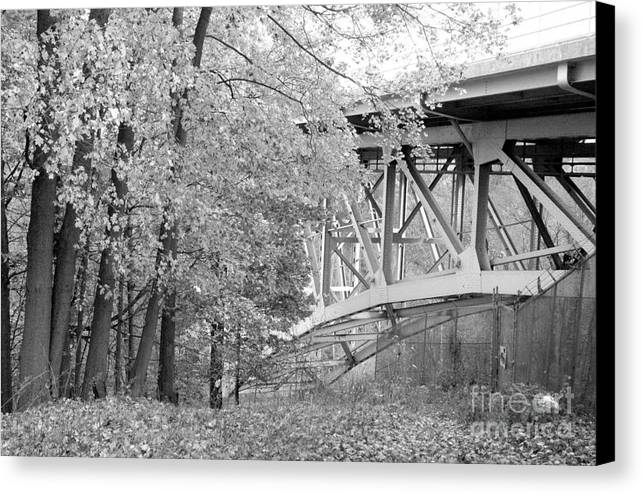 Fall Canvas Print featuring the photograph Falling Under The Bridge by Trish Hale