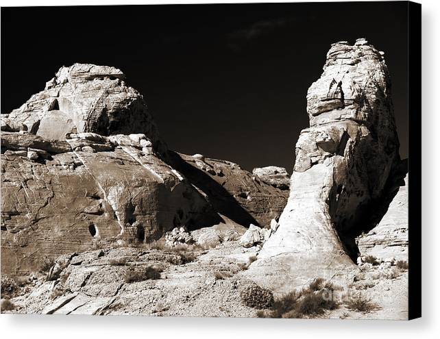 Rock Chatter Canvas Print featuring the photograph Rock Chatter by John Rizzuto