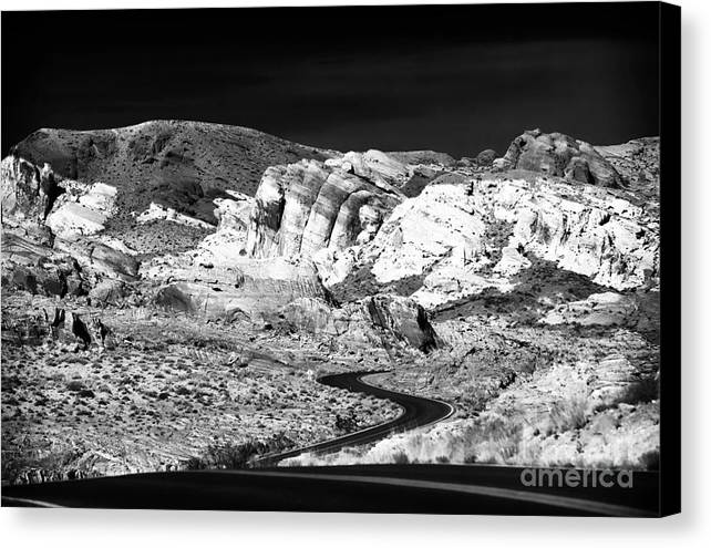 Twisting And Turning Canvas Print featuring the photograph Twisting And Turning by John Rizzuto