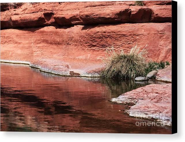 Oak Creek Canvas Print featuring the photograph Oak Creek by John Rizzuto