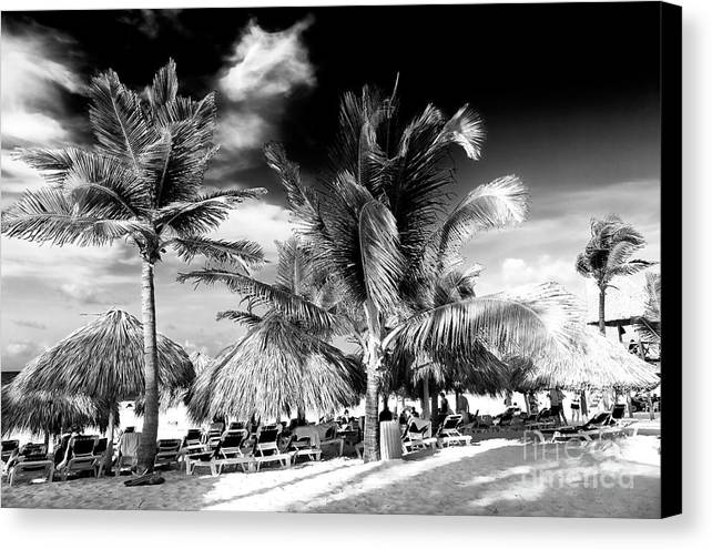Palm Days In Punta Cana Canvas Print featuring the photograph Palm Days In Punta Cana by John Rizzuto