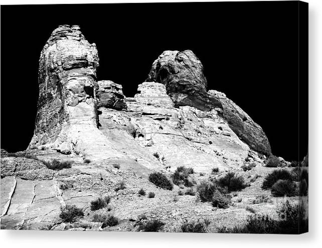 Wise Men Of The Desert Canvas Print featuring the photograph Wise Men Of The Desert by John Rizzuto