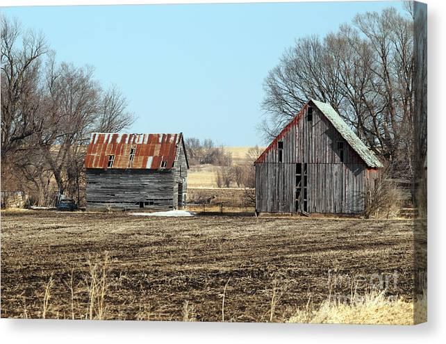 Farm Barn Canvas Print featuring the photograph Rustic Barn 4 by Rick Mann