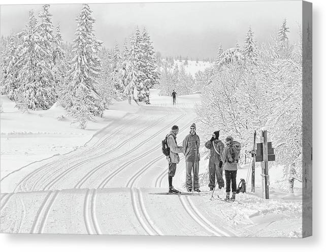 Ski Trail Canvas Print featuring the photograph Birkebeiner Ski Trail by Dan McMahon