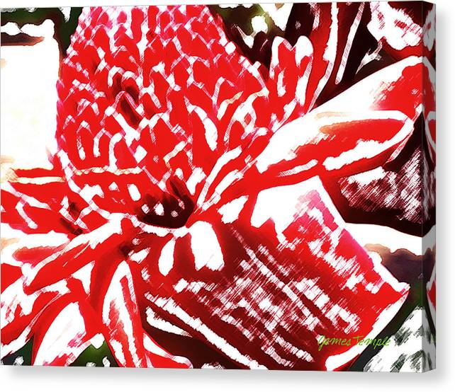 Red Torch Ginger Canvas Print featuring the digital art Red Torch Ginger by James Temple