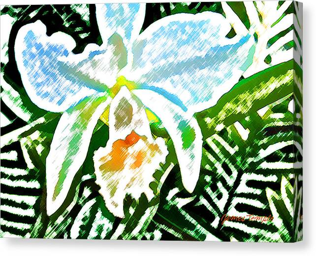 White Orchid Canvas Print featuring the digital art White Orchid by James Temple