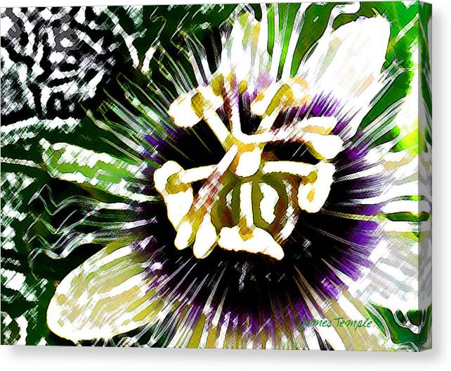 Passion Fruit Flower Canvas Print featuring the digital art Passion Flower by James Temple