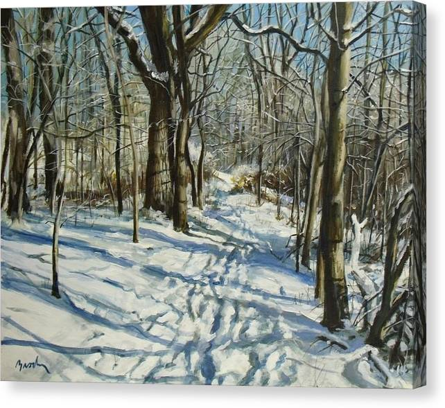 Winter Canvas Print featuring the painting Woodland Journey by William Brody