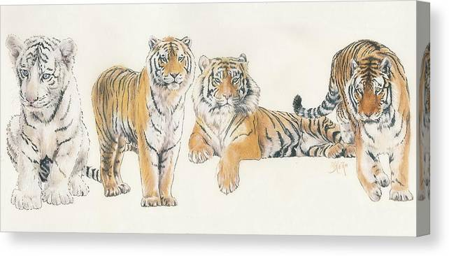 Tiger Canvas Print featuring the mixed media Tiger Wrap by Barbara Keith