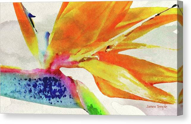James Temple Watercolor Canvas Print featuring the digital art Autumn In Hawaii by James Temple