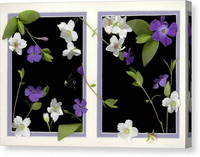 Canvas Print featuring the photograph Double Delight by Sandi F Hutchins
