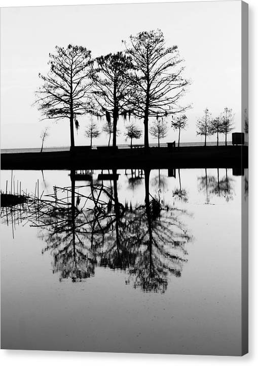 Limited Time Promotion: Winter At The Park Stretched Canvas Print