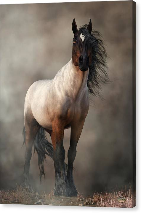 Limited Time Promotion: Bay Roan Horse Art Stretched Canvas Print