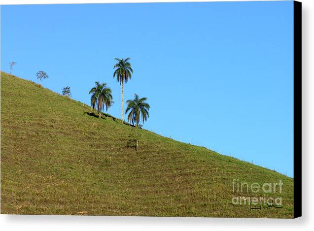 Downhill Canvas Print featuring the photograph Downhill by Carlos Alvim