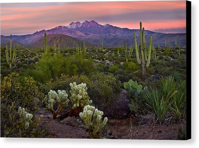 Four Peaks Sunset by Dave Dilli