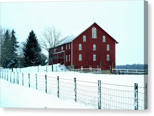 Barn Canvas Print featuring the photograph 012909-7 by Mike Davis