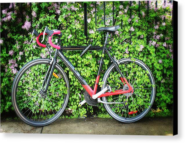 Bicycle Canvas Print featuring the photograph Built For Speed I by Carlos Diaz