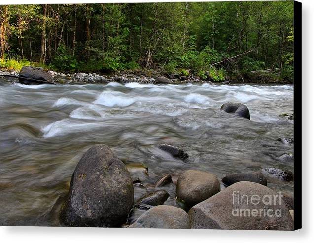 Singing Creek Canvas Print featuring the photograph Singing Creek by Tim Rice