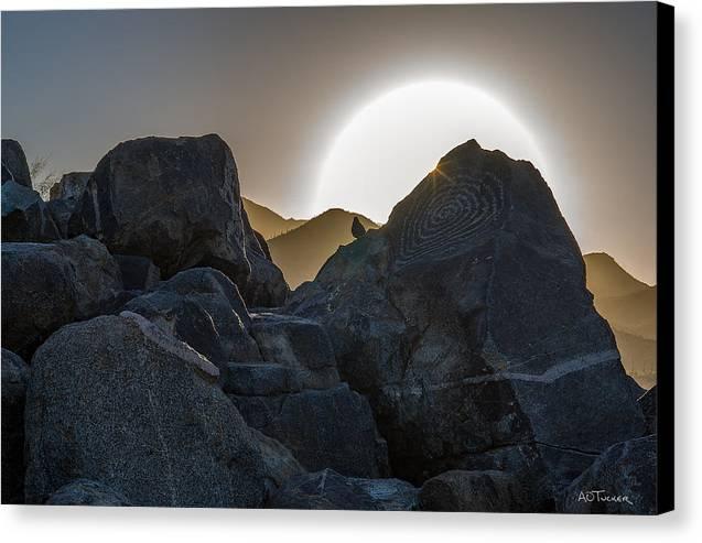 Arizona Canvas Print featuring the photograph Bird On A Rock Art by A O Tucker
