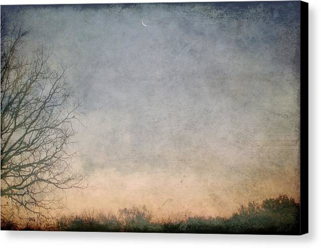 Canvas Print featuring the photograph Misty Morning Moon by Luciana Seymour