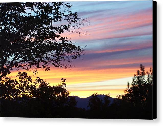 Oak Tree Canvas Print featuring the photograph Northern Ca June Sunset by Angie Anliker