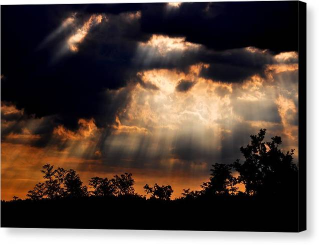 Sun Canvas Print featuring the photograph Sunbeam by Noah Cole