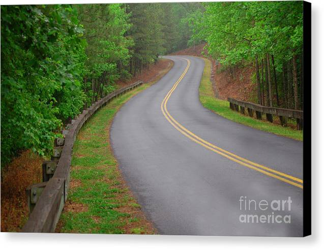 Nature Canvas Print featuring the photograph Winding Road by David Smith