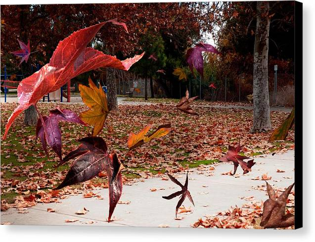Landscape Canvas Print featuring the photograph Autumn Wind by Richard Gordon