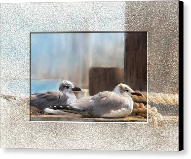 Seascape Birds Sea Birds Digital Media Canvas Print featuring the painting A Place In The Sun by Carolyn Staut