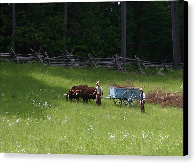 Strawbridge Canvas Print featuring the photograph Green Grass Of Home by Linda Leonard-Pell