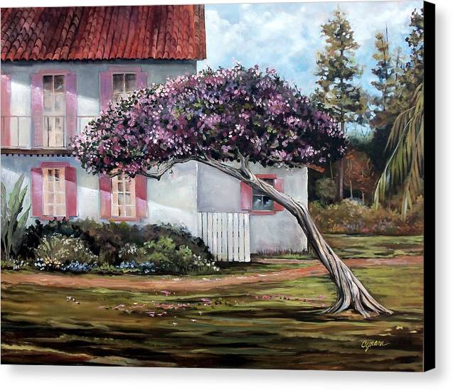 San Diego Tree Canvas Print featuring the painting The Kite Tree by Cynara Shelton