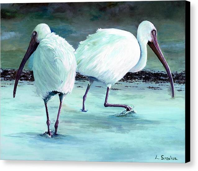 Ibis Canvas Print featuring the painting Ibis by Linda Speaker