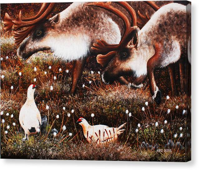 Caribou Canvas Print featuring the painting Keep Your Distance by Mike Ross