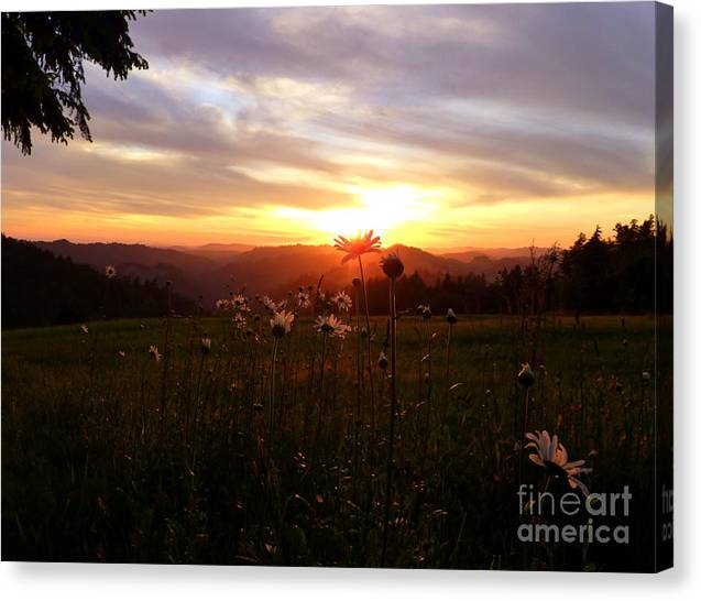 Nature Canvas Print featuring the photograph Shouting With Joy by JoAnn SkyWatcher