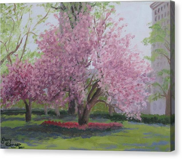 Cherry Tree Canvas Print featuring the painting Cherry Tree Madison Square Park by Gary Conger
