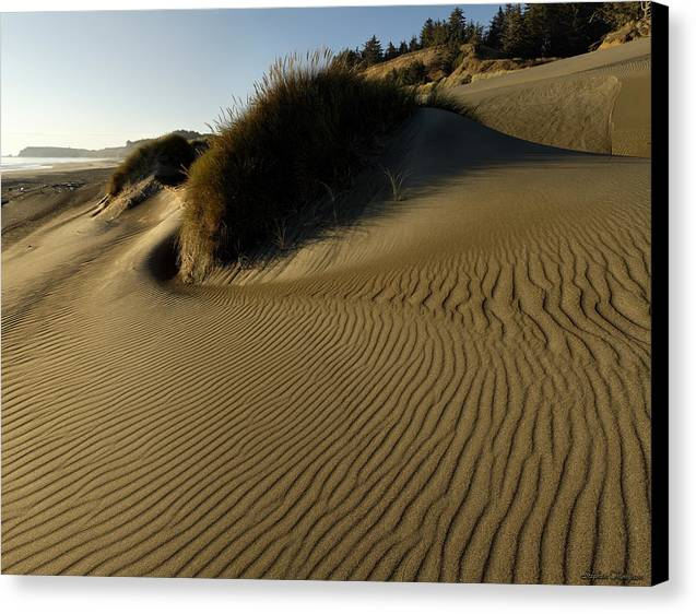 Oregon Canvas Print featuring the photograph Cape Blanco Sands by Stephen Thompson