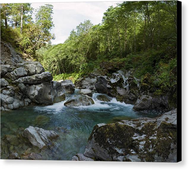 Wilderness Canvas Print featuring the photograph Emerald Waters by Stephen Thompson