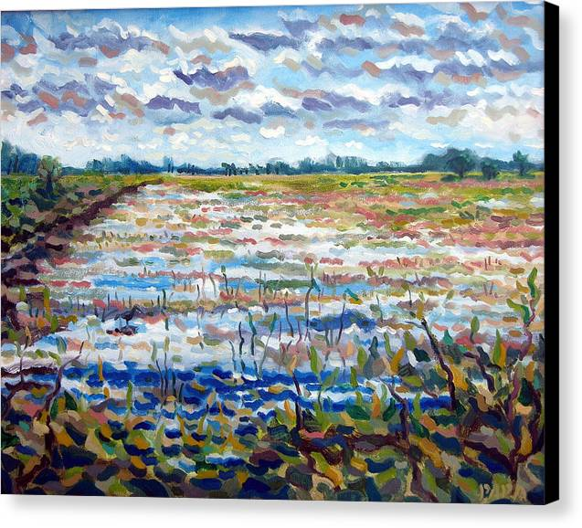 Loxahatchee Canvas Print featuring the painting Loxahatchee Wetlands by Ralph Papa