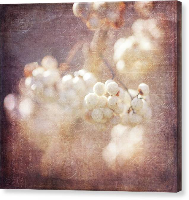 Fall Canvas Print featuring the photograph Fusion Art 21 by Sandy Adams