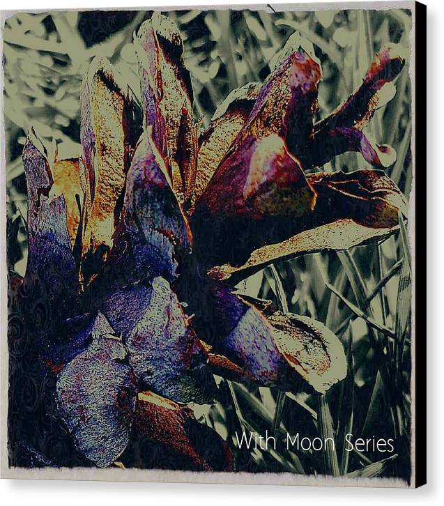 Nature Canvas Print featuring the photograph With Moon Series by Margaret Hwang
