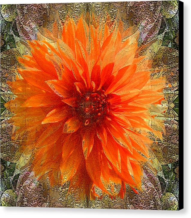 Digital Art Canvas Print featuring the photograph Chrysanthemum by Tom Romeo