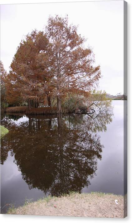 Reflection Canvas Print featuring the photograph Reflection by Sindia Lima