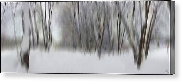 Snow Canvas Print featuring the photograph New Snow In A Floodplain Forest by Wayne King