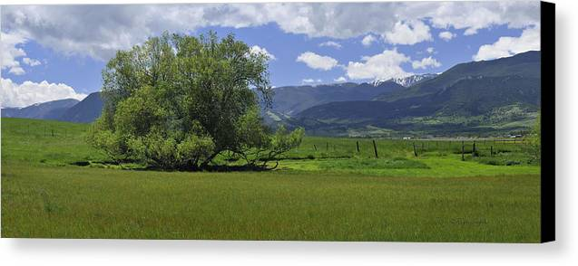 Beautiful Canvas Print featuring the photograph Red Lodge Spring Scene Panorama 3 by Roger Snyder