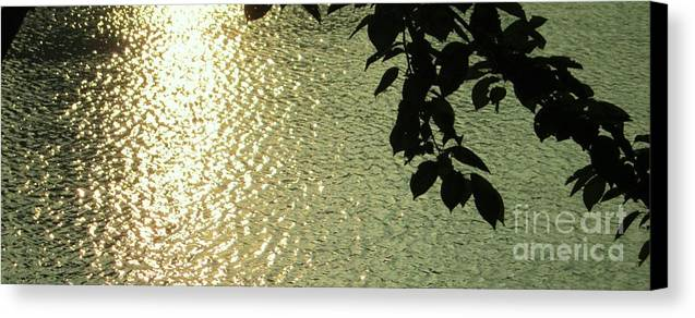 Reflection Canvas Print featuring the photograph Reflection 2 by Esther Rowden