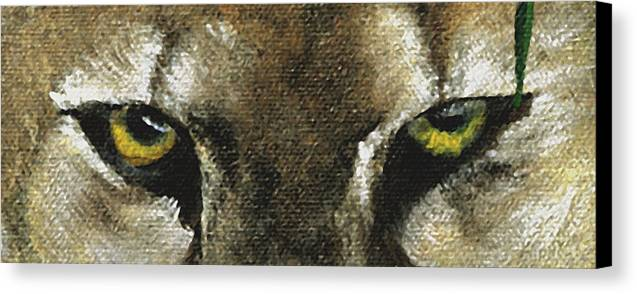 Panther Eyes Canvas Print featuring the painting Whos Watching Who Florida Panther by Darlene Green