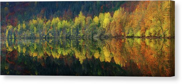Autumn Canvas Print featuring the photograph Autumnal Silence by Burger Jochen