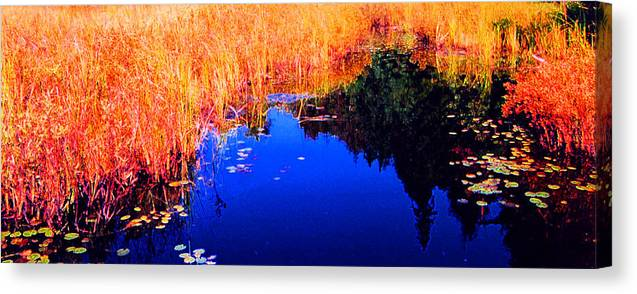 Abstract Canvas Print featuring the photograph Still Water Beside The Forest 3 Ae32 by Lyle Crump